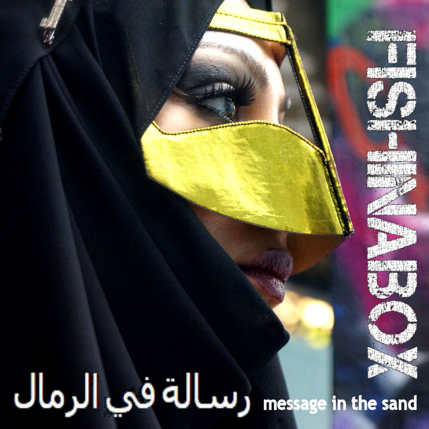 message in the sand amended cover3
