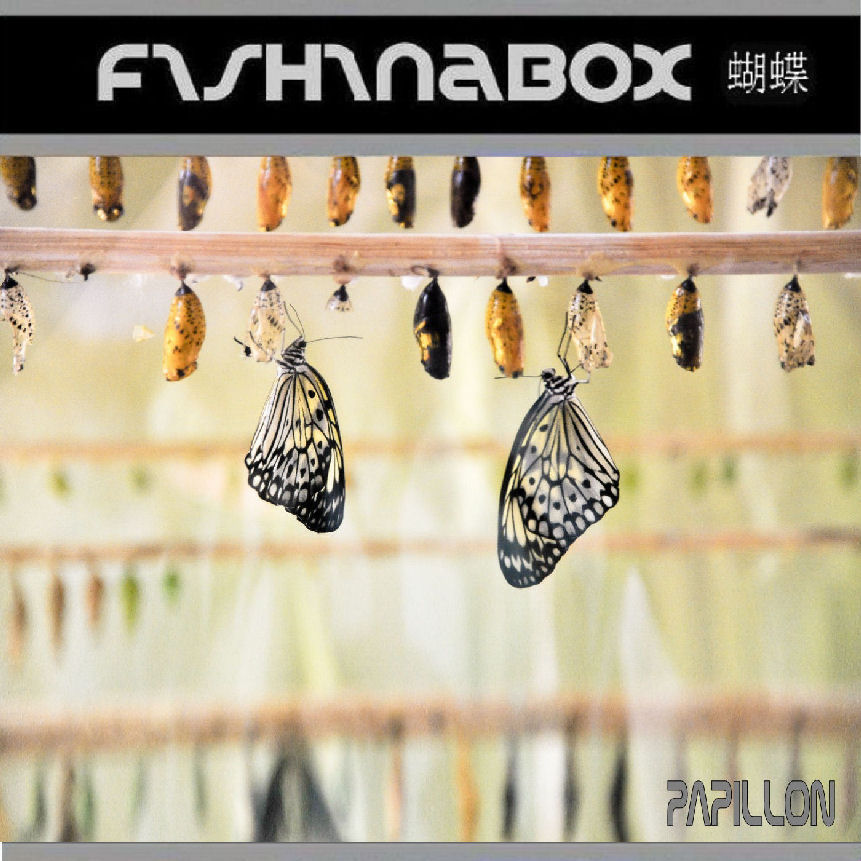 web 09 Papillon COVER ART