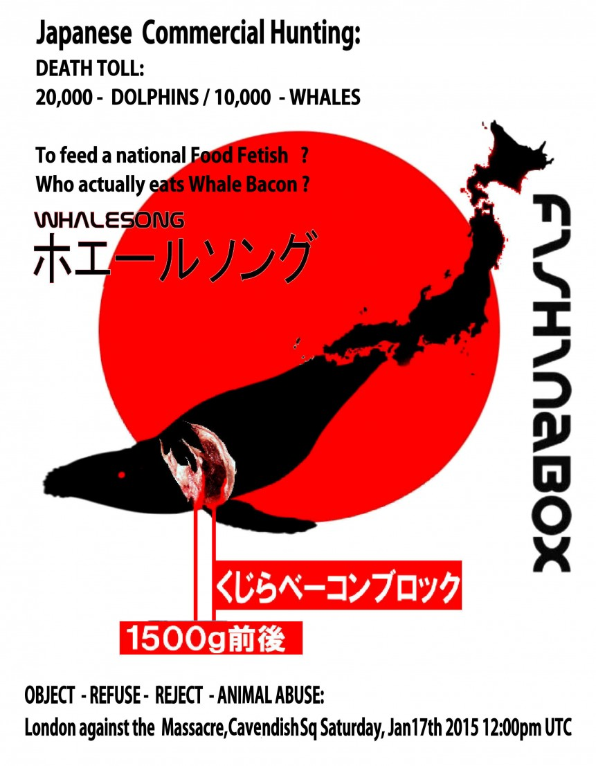 WHALECOVER POSTER JPEG