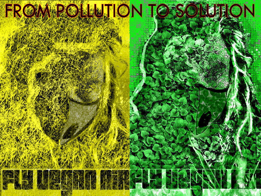 pollution to solution